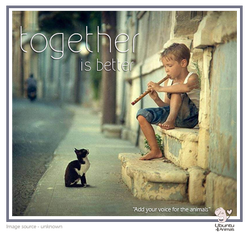 boy with cat and flute.png