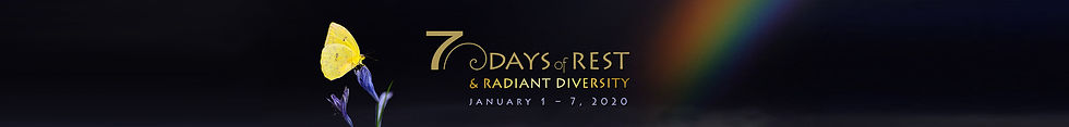 7 - Diversity website banner LONG.jpg