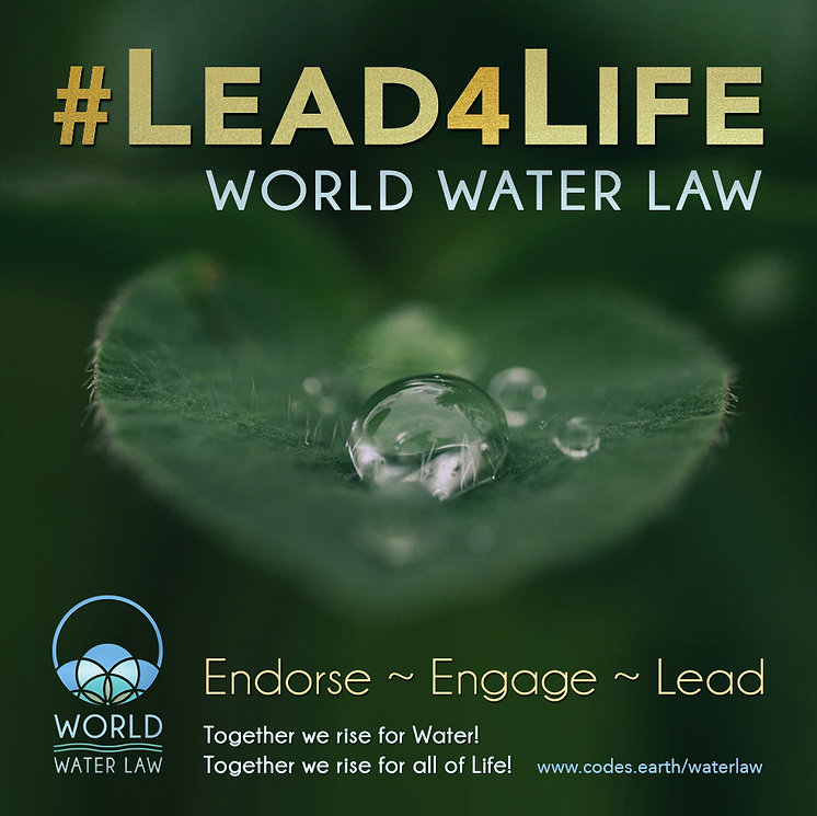 LEAD FOR LIFE 3.jpg