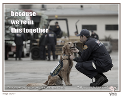 in this together - firefighter and dog.png