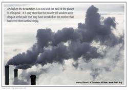 49  polution copy