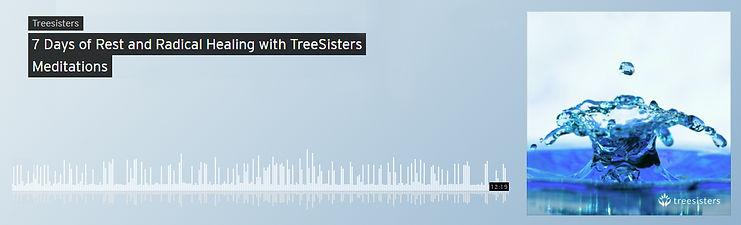 tree sisters 5.jpg