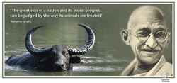 gandhi poster 2.jpg