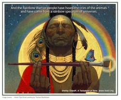 38 rainbow warrior copy