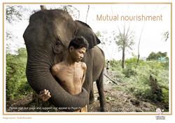 man and eli mututal nourishment copy.jpg