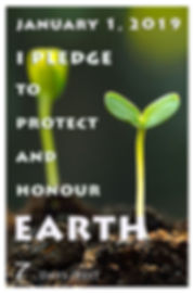 protect and honour earth xr.jpg