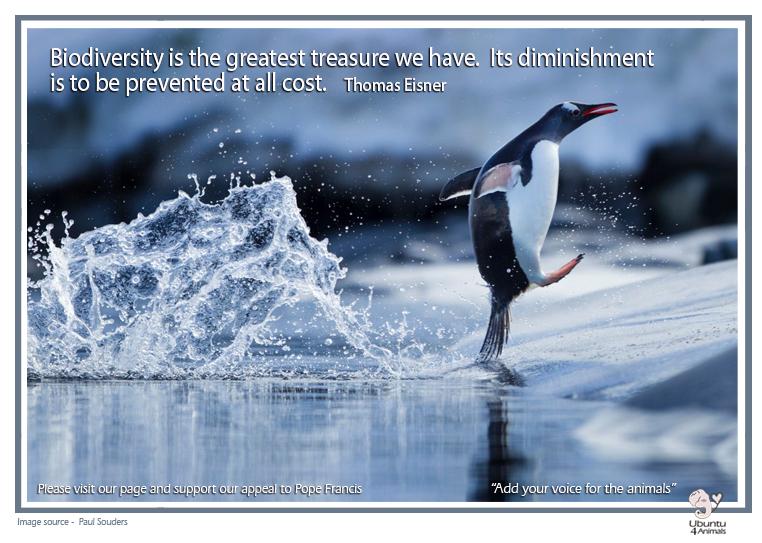 biodiversity thomas eisner copy.jpg