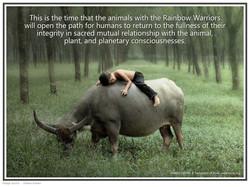 39 boy and rhino