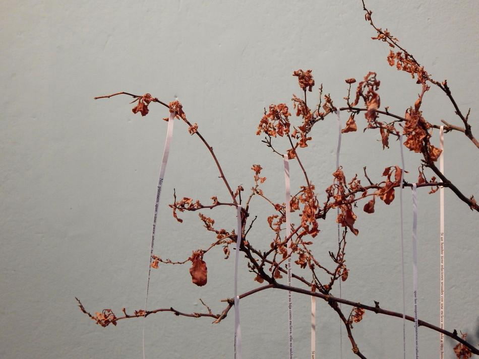 2018 - El jardin de los silencios -65x10