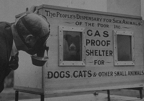 Inventor C.H. Gaunt wears a gas mask and tests his patented gas-proof pet shelter on a small dog in 1940