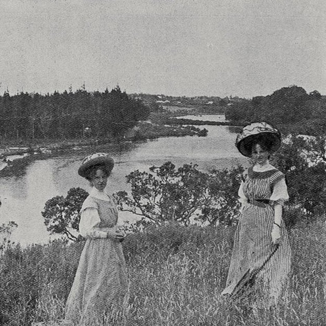 A popular Auckland holiday resort: looking inland from the hills above Castor-oil bay, near Takapuna 1909