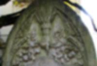 40391e94-6244-4964-9b7d-50e8cf9d242b.jpg