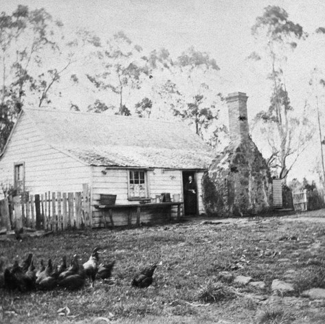 Alexander Mackay's house near Lake Pupuke, on the property now known as Smale's Farm, fronting Shakespeare Road - n.b. Alexander McKay is Ian Handricks' children's great great great grandfather and the property the this house occupied was Ian's first home after he got married!