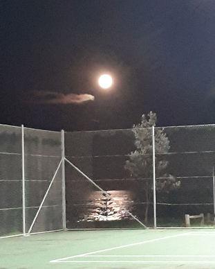 pinecourt_tennis_club_austinmer_courts_f