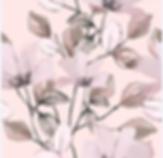 Снимок экрана 2020-02-10 в 19.17.35.png