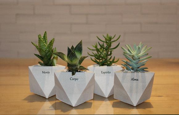 Quarteto de Vasinhos Personalizados com Suculenta