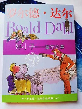 《好小子--童年故事》罗尔德.达尔国际大奖小说