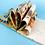 Thumbnail: 《会说话的蛋》精装硬壳启发精选美国凯迪克大奖绘本