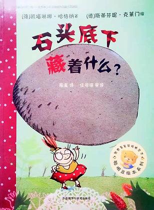 《石头底下藏着什么》聪明豆绘本系列:献给最最聪明的孩子
