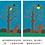 Thumbnail: 精装硬壳《月亮生日快乐》信谊世界精选畅销图画书
