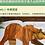 Thumbnail: 硬壳精装《棕色的熊,你在看什么?》信谊世界精选图画书