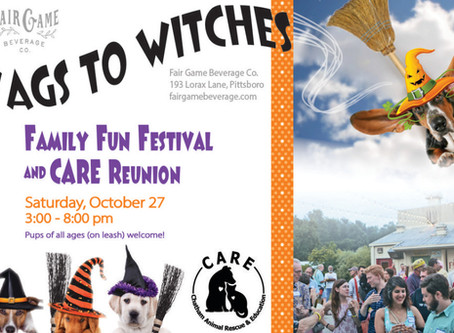Wags to Witches!