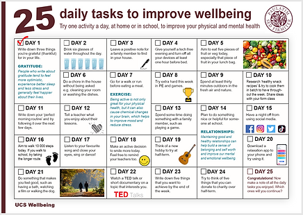 Wellbeing chart.png