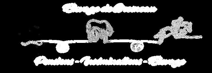 bannière_blanc_sur_noir.png
