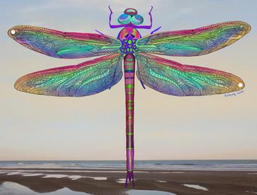 KarmaSirikogar_Dragonfly (Large).jpg
