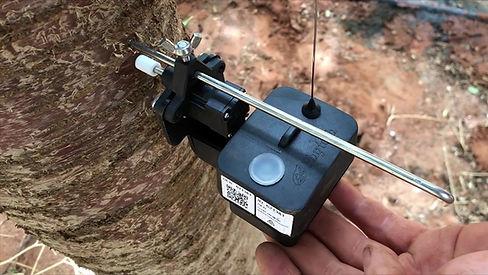 select-harvest-sensor-almond.jpg