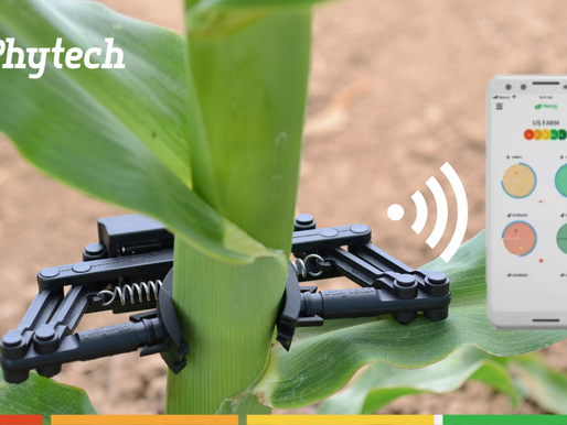 Phytech for row crops: 2021 pre-orders available at a 40% discount