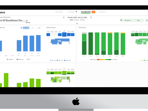 New feature alert: Introducing the Dashboard