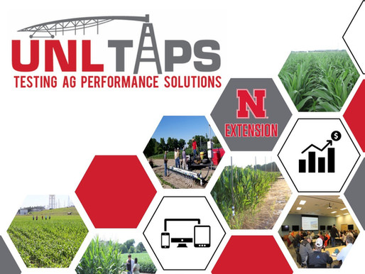 Our 4th UNL-TAPS competition: Ready, set, Grow!