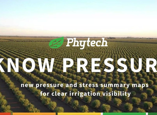 A whole new level of irrigation management: Introducing pressure and stress summary maps