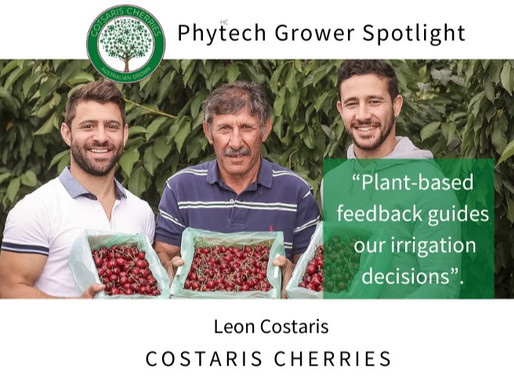 Grower spotlight: Leon Costaris from Costaris Cherries, Australia