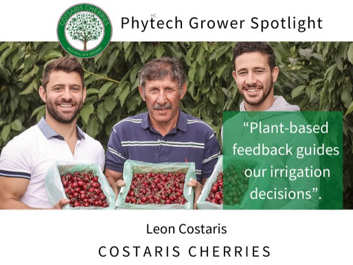Hero spotlight: Leon Costaris from Costaris Cherries, Australia