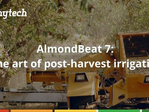 AlmondBeat #7: The art of Post-harvest irrigation