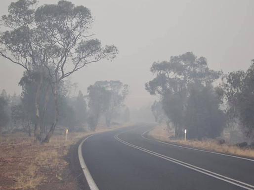 Australia: Bushfires effect on fruit growth