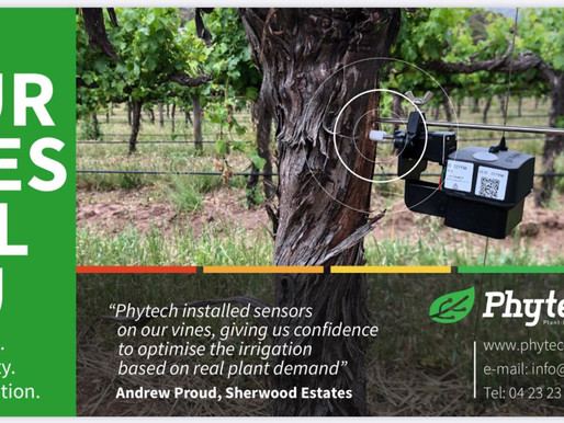 """""""Phytech sensors on our vines, giving us confidence"""""""