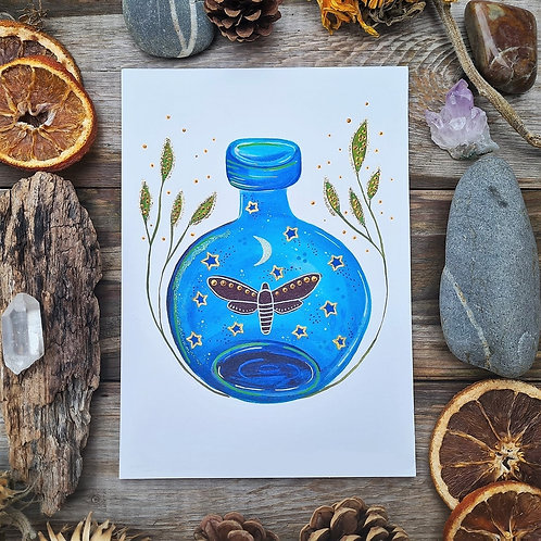 Moth in a bottle art print - Moth painting - Bottle poster - Magic illustration
