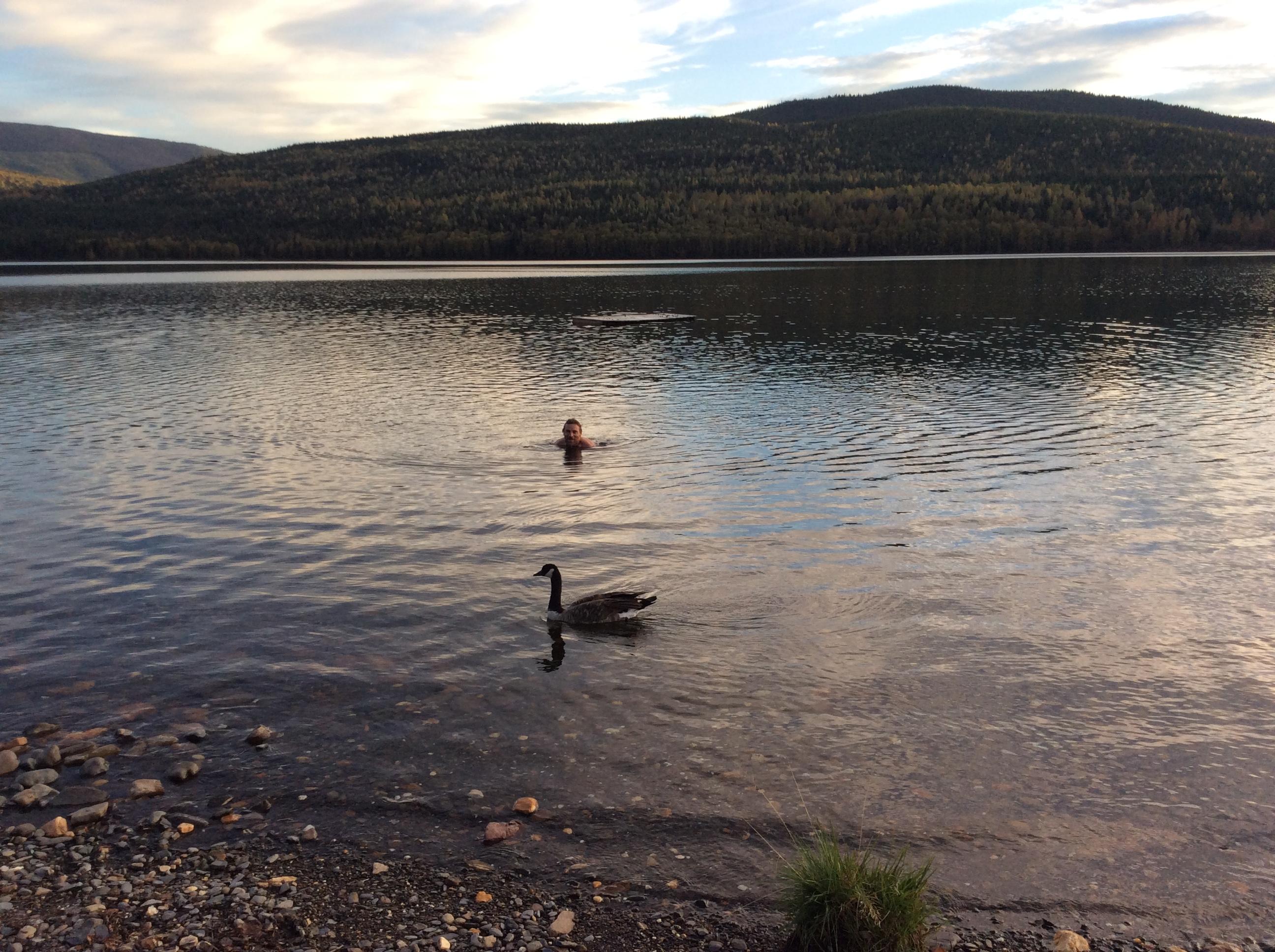Al and goose