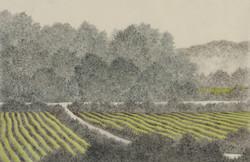 길, 한지에 수묵채색, 32x52cm, 2016