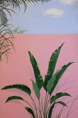 황다연, Pink series4