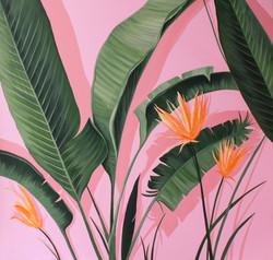 황다연, Pink spring