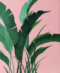 황다연, Green plant