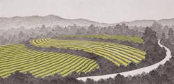 밭, 한지에 수묵채색, 60x120cm, 2016