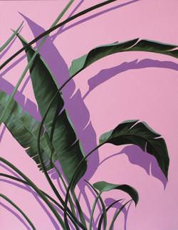 황다연, Pink plant_3