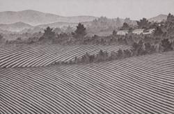밭, 한지에 수묵채색, 80x120cm, 2015