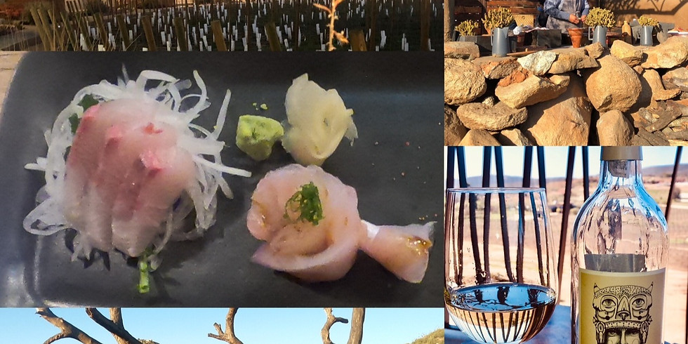 Valle de Guadalupe 1 and 2 Day Trips