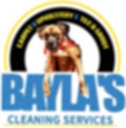 Baylas white logo_edited_edited.jpg